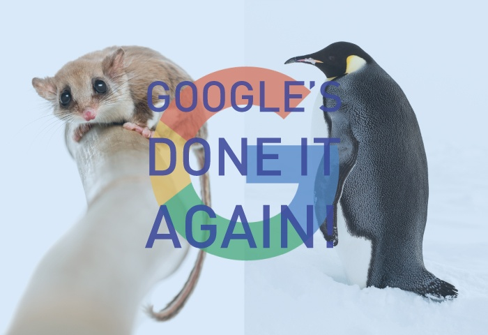 penguin and possum SEO google