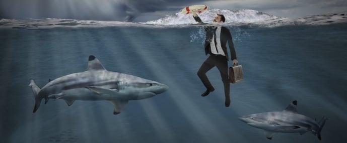 shark-tank-sink-or-swim.jpg